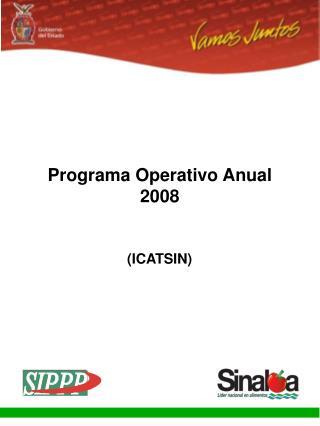 Programa Operativo Anual 2008