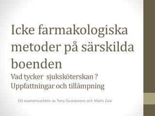 Ett examensarbete av Tony Gustavsson och Malin  Zaar