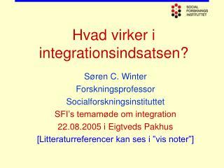 Hvad virker i integrationsindsatsen?