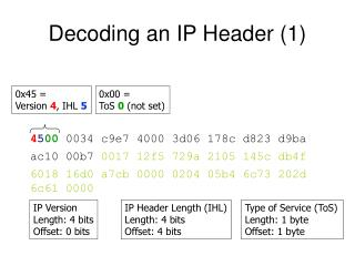 Decoding an IP Header (1)