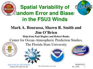 Spatial Variability of  Random Error and Biases  in the FSU3 Winds