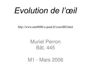 Evolution de l'œil umr8080.u-psud.fr/coursBD.html Muriel Perron Bât. 445 M1 - Mars 2006
