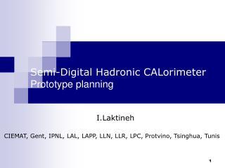 Semi-Digital Hadronic CALorimeter Prototype planning
