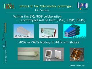 Status of the Calorimeter prototype