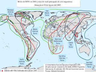 Brotes de H5N1 en 2005 y rutas de vuelo principales de aves migratorias