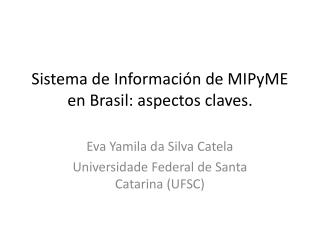 Sistema de  Información  de  MIPyME en  Brasil: aspectos claves.