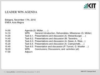LEADER WP6 AGENDA Bologna, November 17th, 2010 ENEA, Aula Magna 14.00Agenda (G. Müller, …..)