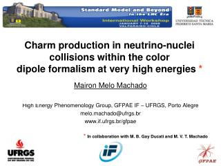 Mairon Melo Machado High Energy Phenomenology Group, GFPAE IF – UFRGS, Porto Alegre