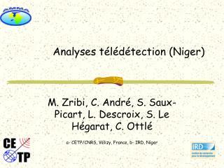 Analyses télédétection (Niger)