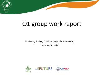 O1 group work report