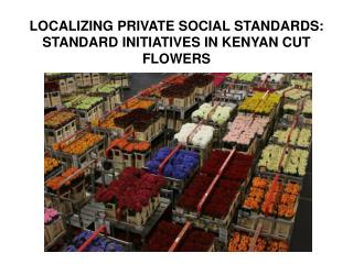 LOCALIZING PRIVATE SOCIAL STANDARDS:  STANDARD INITIATIVES IN KENYAN CUT FLOWERS