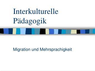Interkulturelle P dagogik