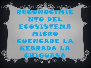 Reconocimiento del ecosistema micro  cuencade  la  kebrada  la  chiguasa