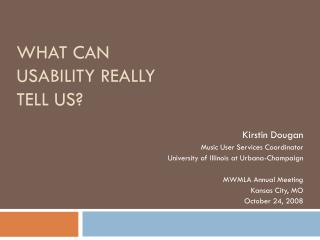 What Can Usability Really Tell Us?
