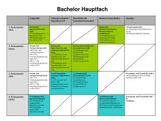 Bachelor Hauptfach