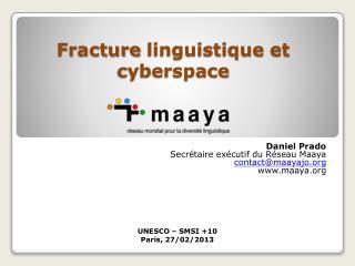 Fracture  linguistique et  cyberspace