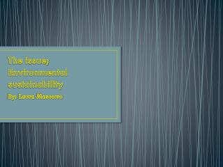 The issue; Environmental sustainability