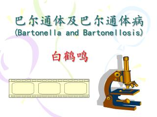 巴尔通体及巴尔通体病 (Bartonella and Bartonellosis)