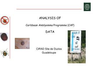 ANALYSIS OF Caribbean  Amblyomma  Programme (CAP) DATA