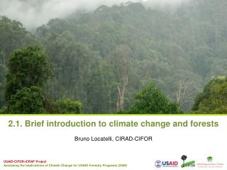 2.1. Brief introduction to climate change and forests