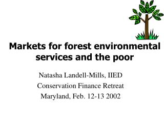 Markets for forest environmental services and the poor