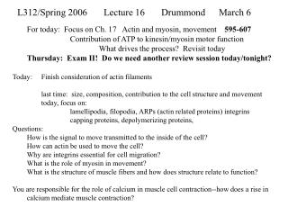 L312/Spring 2006	Lecture 16	Drummond 	March 6