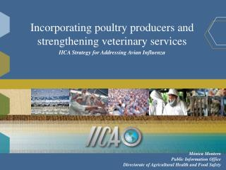 Incorporating poultry producers and strengthening veterinary services