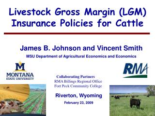 Livestock Gross Margin LGM Insurance Policies for Cattle