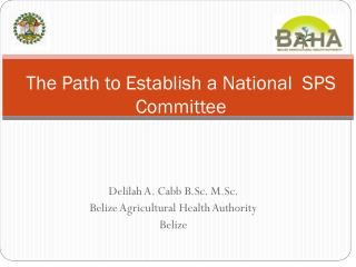 The Path to Establish a National  SPS Committee