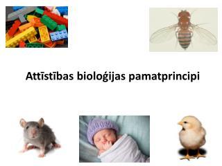 Attīstības bioloģijas pamatprincipi