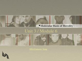 Unit 3 / Module 6