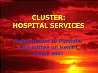 CLUSTER:  HOSPITAL SERVICES Presentation to Portfolio Committee on Health 3 April 2001