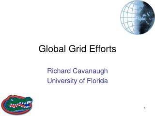 Global Grid Efforts