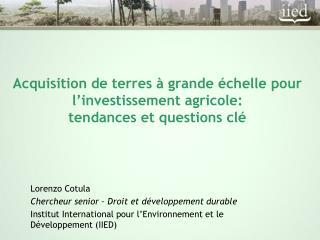 Acquisition de terres à grande échelle pour l'investissement agricole:  tendances et questions clé