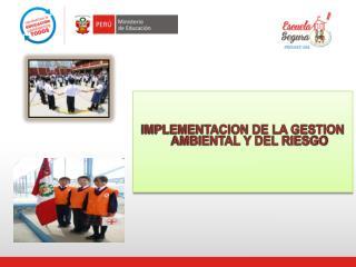 IMPLEMENTACION DE LA GESTION AMBIENTAL Y DEL RIESGO