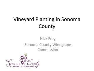 Vineyard Planting in Sonoma County