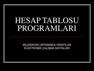 HESAP TABLOSU  PROGRAMLARI