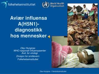 Aviær influensa A(H5N1)-diagnostikk hos mennesker