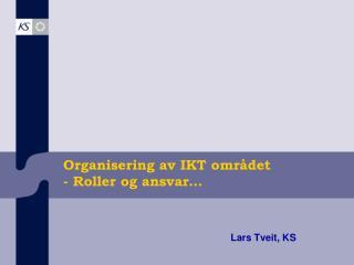 Organisering av IKT omr�det - Roller og ansvar�