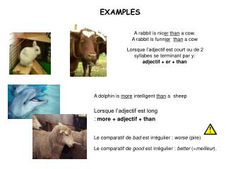A rabbit is nicer than a cow. A rabbit is funnier  than a cow   Lorsque l adjectif est court ou de 2 syllabes se termina
