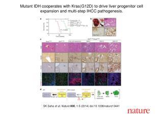 SK Saha  et al. Nature  000 , 1-5 (2014) doi:10.1038/nature13441