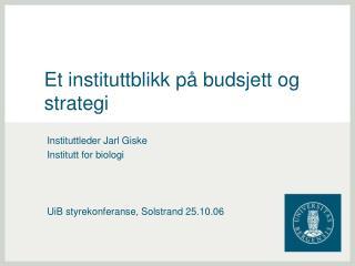 Et instituttblikk på budsjett og strategi