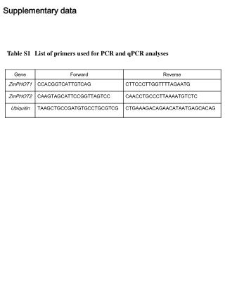 Table S1 List  of primers used for PCR and  qPCR analyses