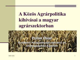 A Közös Agrárpolitika kihívásai a magyar agrárszektorban