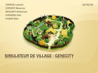 Simulateur de VILLAGE :  genecity