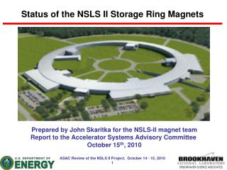Status of the NSLS II Storage Ring Magnets