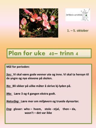 Plan for uke  40 – trinn  4