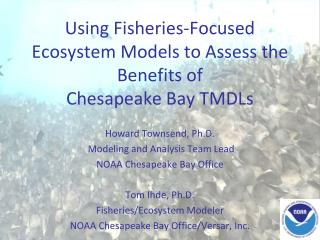 Using Fisheries-Focused Ecosystem Models to Assess the Benefits of  Chesapeake Bay TMDLs