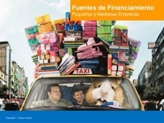 Fuentes de Financiamiento Pequeñas y Medianas Empresas