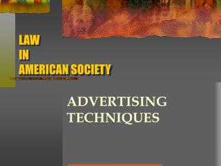 LAW  IN  AMERICAN SOCIETY